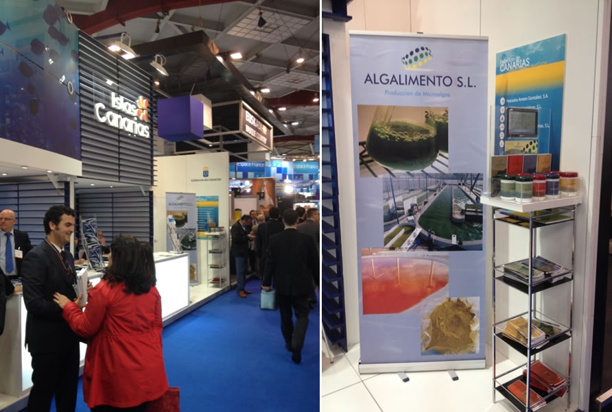 "Participación en el ""European Sea Food Brussels 2013 y 2014"""
